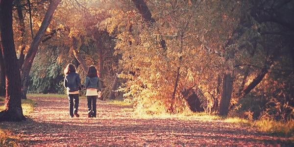 写真を紅葉の景色に変える