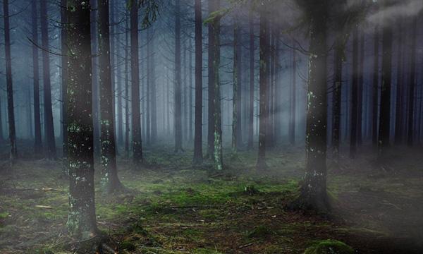 ブラシツールを使って霧を表現